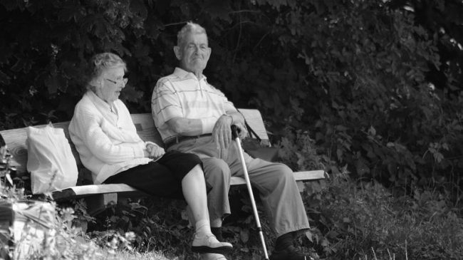 Pension Reform Handbook: A Starter Guide for Reformers