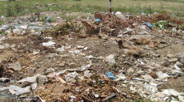 Plastic Bag Ban Hurts California's Economy