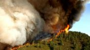 Devastating Fires Show Forest Management Reforms Are Badly Needed