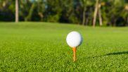 Improving Detroit's Public Golf Courses Demands Longer-Term Solutions