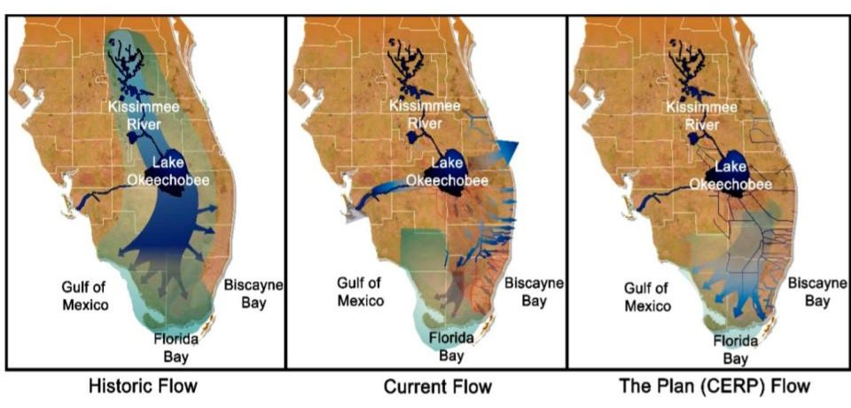 U.S. Army Corps of Engineers, Jacksonville District. Comprehensive Everglades Restoration Plan (CERP)—Water Flow Maps of the Everglades: Past, Present and Future. https://www.mdpi.com/2071-1050/8/9/940/htm#B77-sustainability-08-00940