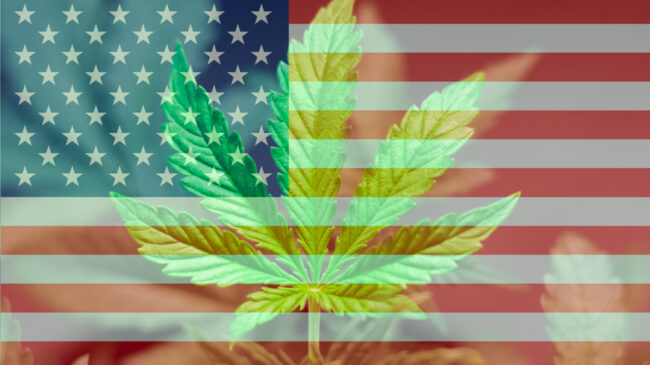 Cannabis Freedom Alliance Launches, Aims to Spur Federal Legalization of Marijuana
