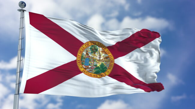Florida Retirement System Pension Solvency Analysis