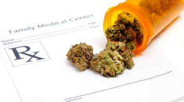 A Common Sense Approach to Marijuana Therapy