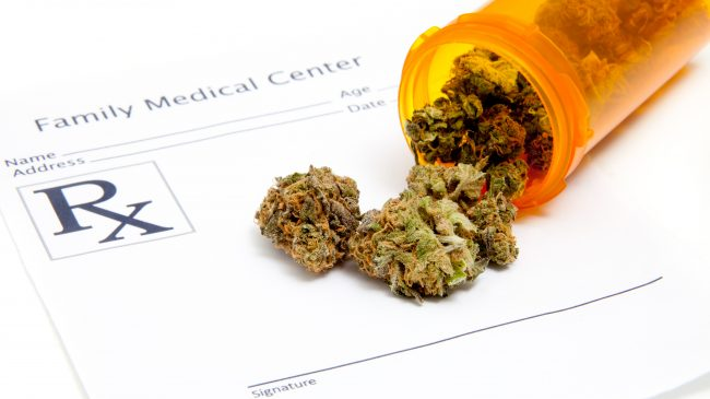 A Common Sense Approach to Marijuana Therapy