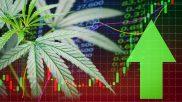 Market Size Estimates For Legalized Marijuana