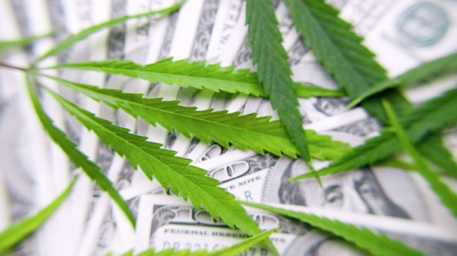 Nevada's Marijuana Banking Bill Is Not a Viable Solution for Businesses