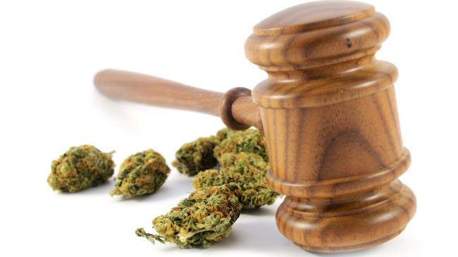 Lawmakers in 10 States Have Introduced Proposals to Legalize Marijuana This Year