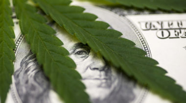 Marijuana Taxation and Black Market Crowd-Out