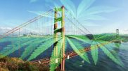 LAO Report: California's Taxes and Rules Mean Legal Marijuana Can't Compete With Black Market Prices