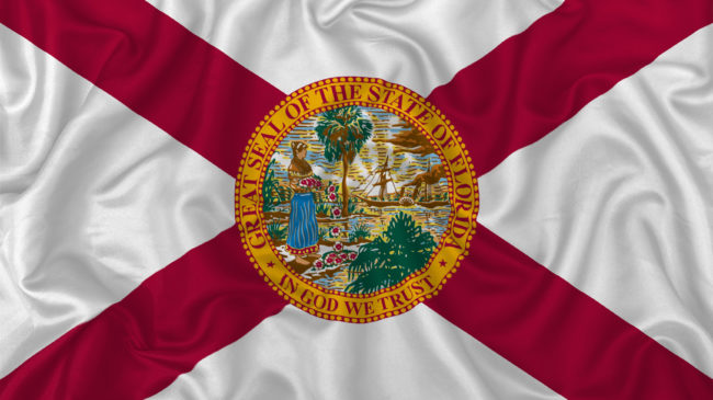 Voters' Guide to the 2020 Florida Ballot Initiatives
