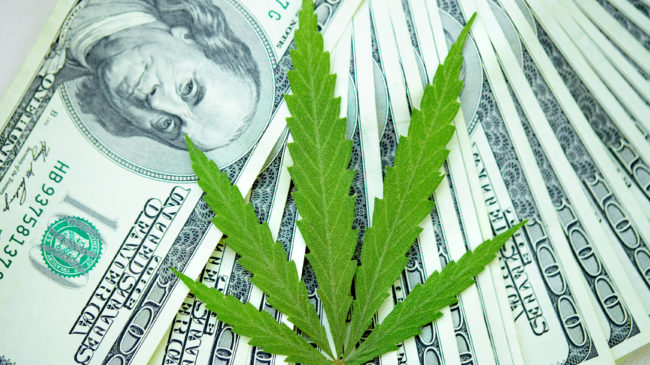 Watch Experts Evaluate the Various Approaches to Marijuana Taxation