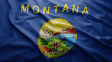 Montana Teacher Retirement System Pension Solvency Analysis