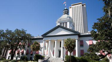 Florida Ballot Amendment Analysis: Amendment 10