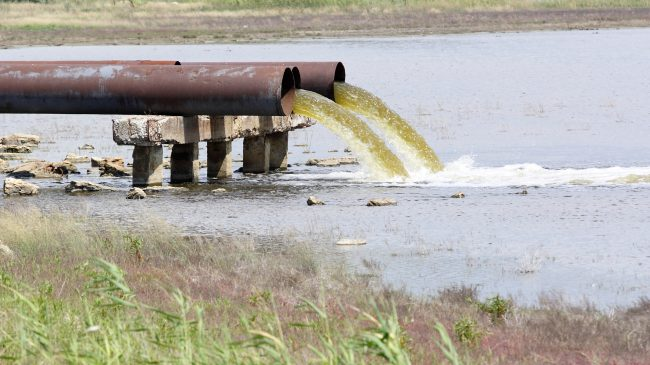 Why Are Sewage Spills Just Accepted in Florida?
