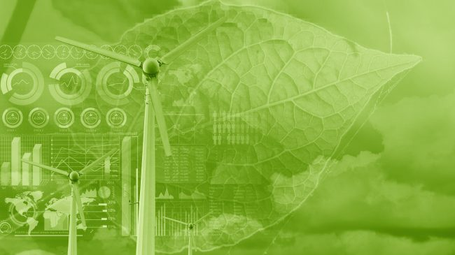 Would a Green Fiscal Stimulus Help the Environment and the Economy?