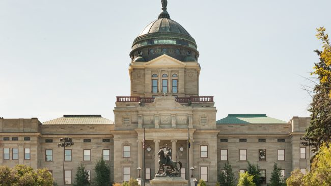 Assessing the Financial Sustainability of Montana's Largest Public Pension Systems