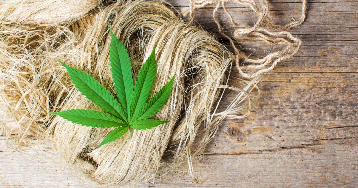 Плетут из конопли сотрясение мозга марихуана